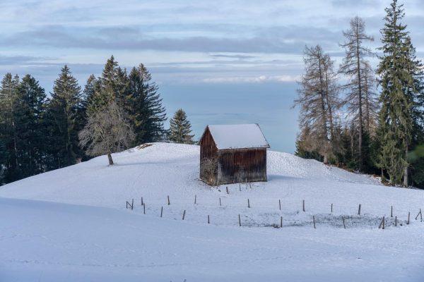 01/01/2021 Austria Vorarlberg Bregenz Wanderweg vom Pfänder nach Bregenz. Blick über eine kleine ...