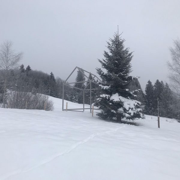 Georunde bei Hochnebel- auch schöne kleine Wanderung ❄️⭐️❄️⭐️ #winterwonderland #winteriscoming #dahoam #schnee #winter ...