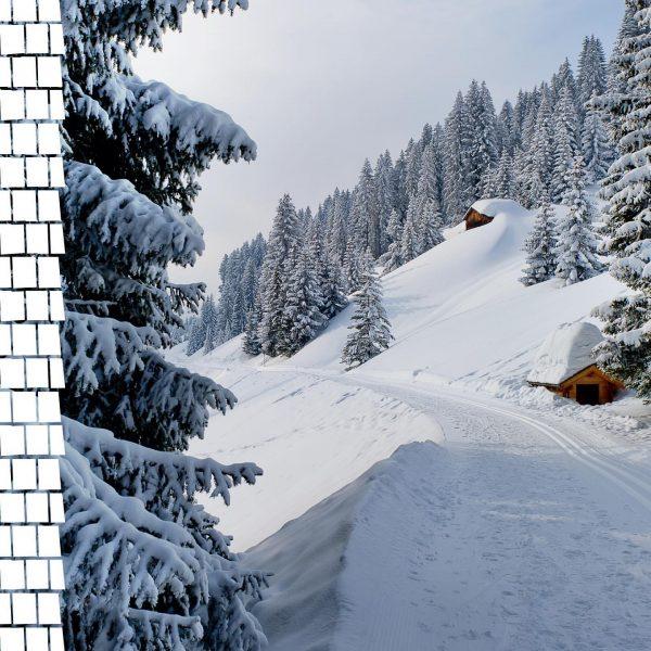 Ein Blick um's Eck zeigt uns den tief verschneiten Schmuseweg. Ja, der heißt ...