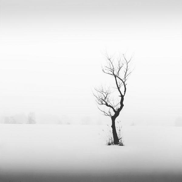 Ich warte ja immer noch auf richtig viel #schnee. ❄️☃️ Bis er fällt ...
