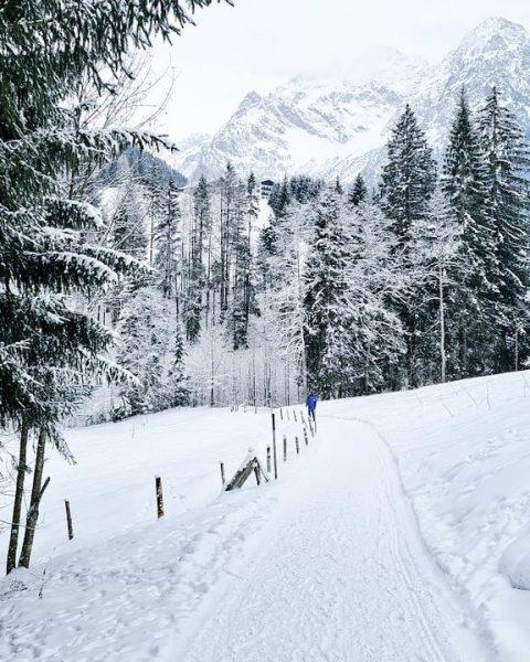 Grijs-wit vandaag. Er dwarrelen sneeuwvlokjes en het is nu -4gr C We lopen ...
