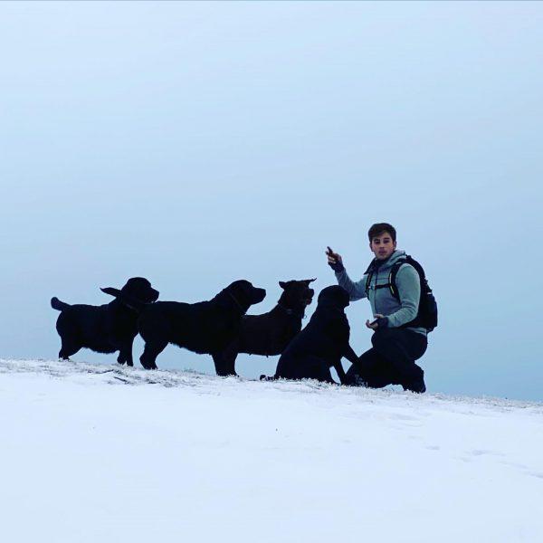 #doglover #labrador #labradorofinstagram #labrador4life #labradorfamily #hirschberg #bregenzerwälderhandwerk