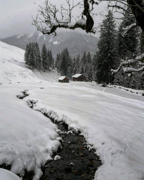 Winterwonderland Schönenbach #bregenzerwald #bregenzerwald_fan #snowshoeing #schneeschuhtour #Schönenbach #winterwonderland #winterlandschaft #winter #schnee #bergliebe #beautiful_world ...