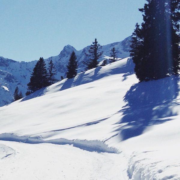 Viel Spass beim Skifahren...😁 ...auch wenn derzeit kein Einkehrschwung ins Frööd erlaubt ist. ...