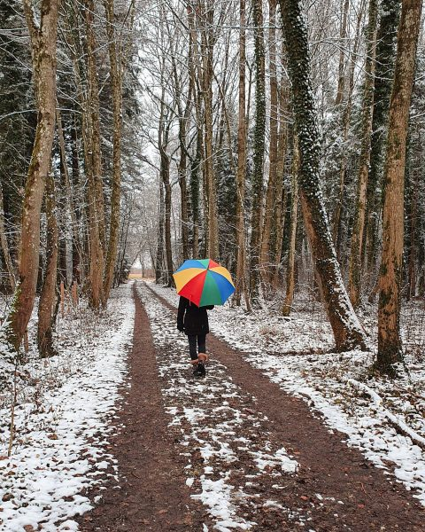 Dear snow, please stay for a while ❄🚶‍♀️. Oder was denkt ihr ❄🏖? ...
