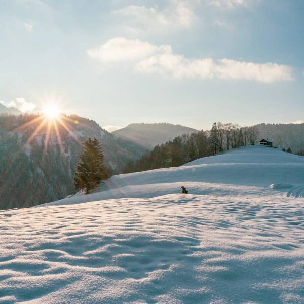 Sunny winterride #visitbregenzerwald #snowfun #mountainbike #emountainbike #emountainbikeowners #specializedlevoturbo Andelsbuch