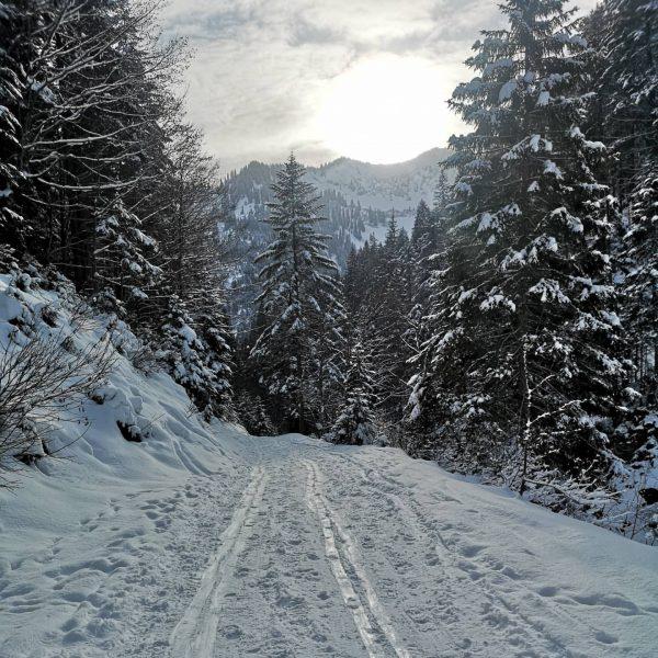 Happiest outdoors 🤍 Skitour to Gerenfalben 🎿 🗻 🤩😍 #nofilterneeded ❄ ❄ ❄ ...