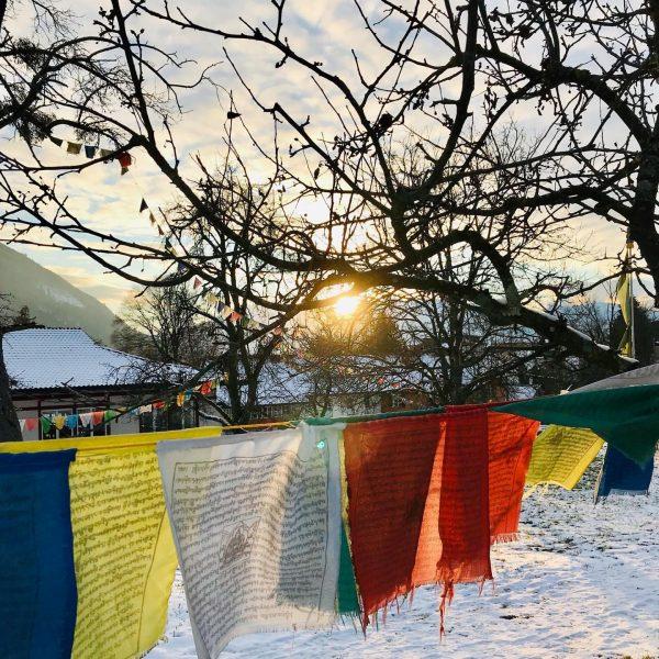 Obwohl das Reisen im klassischen Sinne derzeit fast unmöglich ist, bietet das buddhistische ...