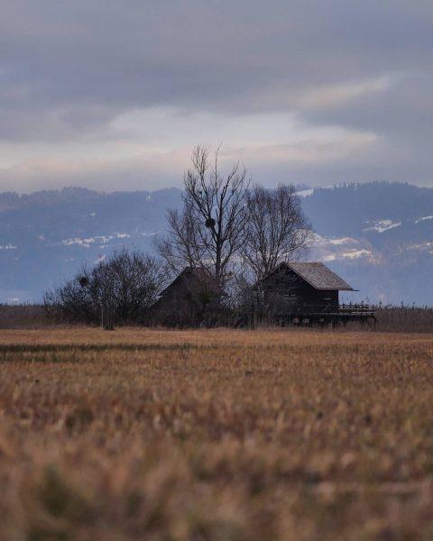 #rohrspitz #höchst #fussach #vorarlberg #austria🇦🇹 #visitvorarlberg #visitaustria #enjoyaustria . . . . . ...