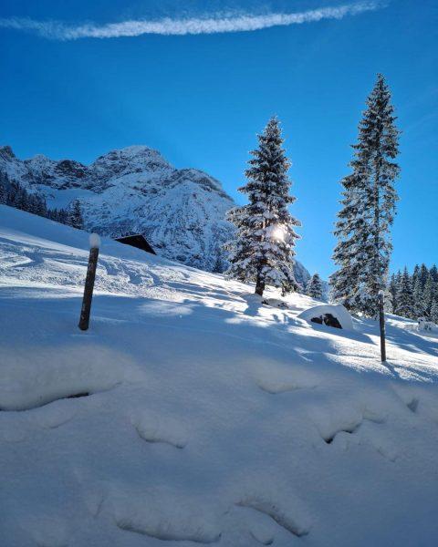Ist es nicht ein Traum?❄️❄️☀️✨ #traumlandschaft #dreamweather #blauerhimmel #winterwonderland #winter #schnee #snow #winter ...