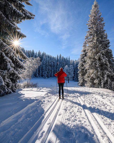Langlaufen am Bödele Cross-Country skiing at the Bödele #vorarlberg #bregenzerwald #visitbregenzerwald #austria #whereinaustria ...