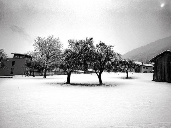 More Snow. ❄️ #holiday #winter #montafon #Österreich #winterwonderland #ig_austira #nature #naturelovers #snow #snowlovers ...