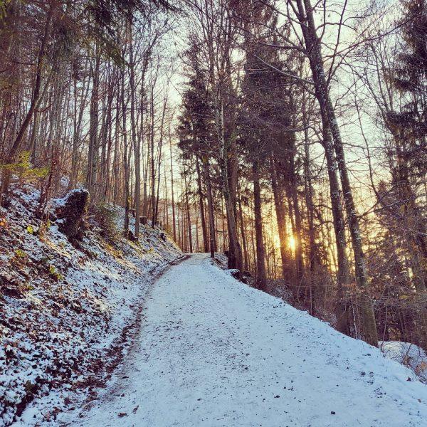 #Vorarlberg #hiking Gsohlalp