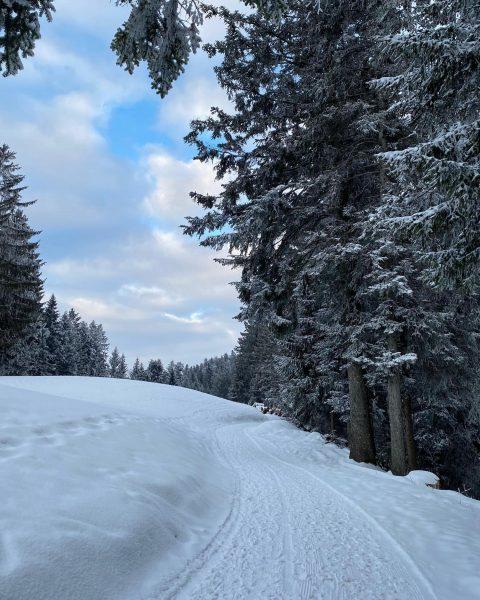𝐸𝑖𝑐ℎ𝑒𝑛𝑏𝑒𝑟𝑔❄️ #eichenberg #vorarlberg #austria #wintertime #bäume #tree #hikingday #wandern #snowwhite #schneezauber #shotoniphone #coldweather ...