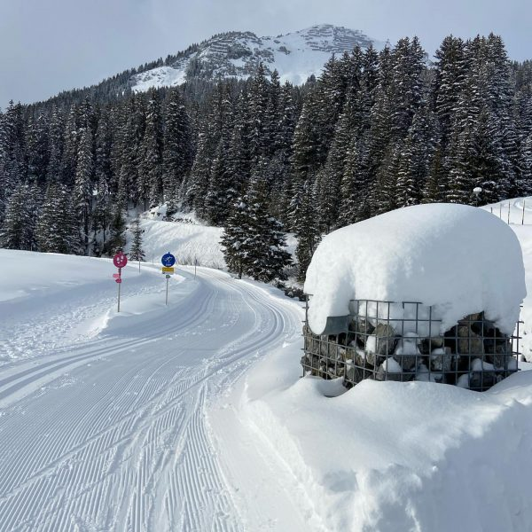 Traurig schön🍀😇😞😔 #lechzuers #arlberg #roggal #mountains #hiking #placetobe #beautifulday #paradise #mylechzuers #wanderdoerfer #diemagiedeslebens2019 ...
