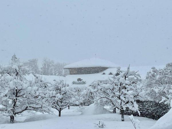 ... und die Schneebilder von heute!!! Puahhhhh ❄️ Es schneit und schneit und schneit uns ein! Sooo...