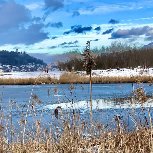 Spaziergang zum Egelsee an der Grenze zum Fürstentum Liechtenstein #egelsee #feldkirch #tosters #vorarlberg #winterspaziergang #naturtutgut Feldkirch, Vorarlberg