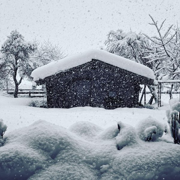 It has been snowing non-stop for the last 24 hours. Usually the best ...