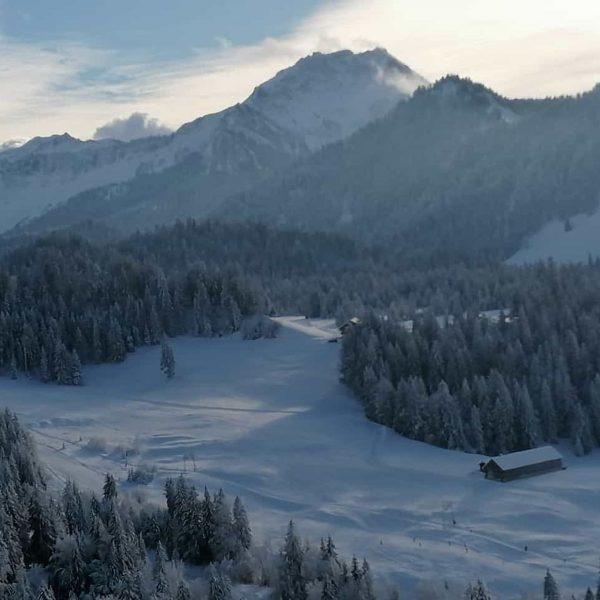 Gestern schon ein Traum am Krähenberg und heute versinkt Sibratsgfäll im Schnee ❄️ ...