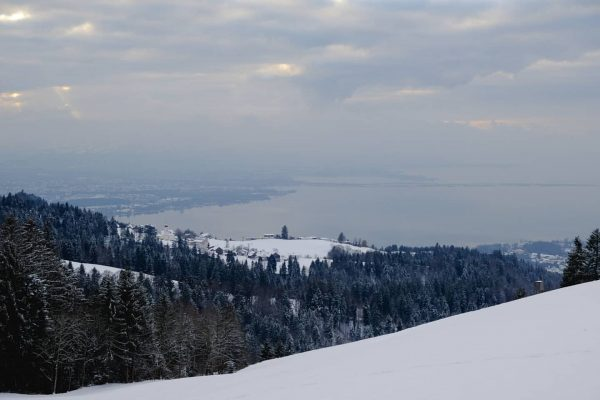 Living with a view #lakeconstance Möggers, Vorarlberg, Austria