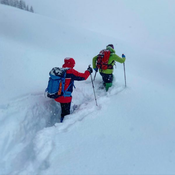 Der Winter hat uns wieder voll im Griff. Zur Zeit herrschen spannende Verhältnisse bei unserer Winterwanderführer-Ausbildung im...