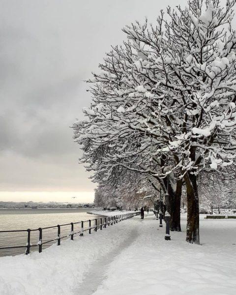 📍Bodensee . . . #bregenz #visitbregenz #vorarlberg #bodensee #lakeofconstance #snowday #winterwonderland #seepromenade #molo ...
