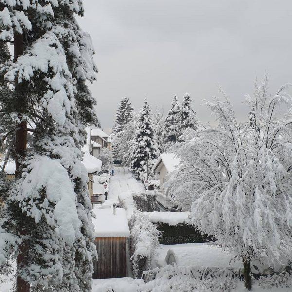Bregenz #myhome #visitbregenz #visitvorarlberg #vorarlberghältzusammen #winterisnow Bregenz Bodensee