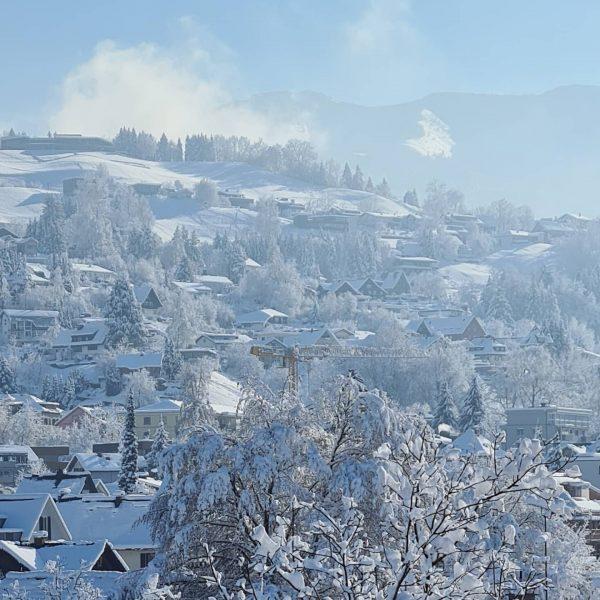 Ok. Schnee. #flockdown @6850dornbirn Die Gelbe Fabrik