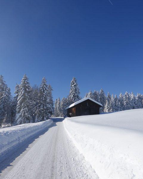 Bilderbuchwetter ☀️ #kitschig #winter #winterwonderland #visitbregenzerwald #visitvorarlberg #poldi #sulzberg #snow #natur #holiday Apartments ...