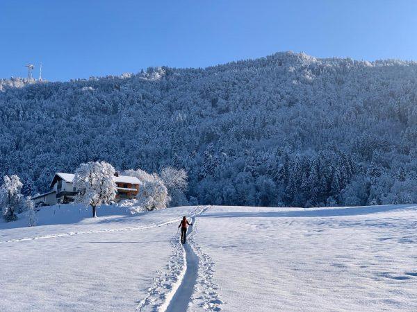 kitsch as kitsch can ... perfect winterday in Bregenz ... . . #skimo ...