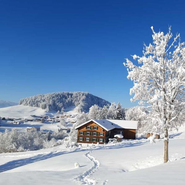 """""""Landwirtschaft in Hittisau"""" ➡️ Die Höfe unserer #heumilchbauern äußerlich im Winterschlaf. ❄️❄️☀️ Im ..."""