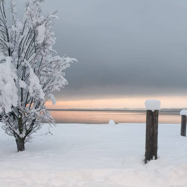 Bregenz #winter #snow #sweethome