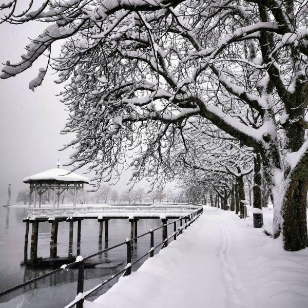 Today's #morningwalk #snowwalkalk ❄️😍 #winterwonderland . . . #bregenzambodensee #bregenz #pavillion #bregenzambodensee #bodensee #seepromenade #view #snow #lakeofconstance...