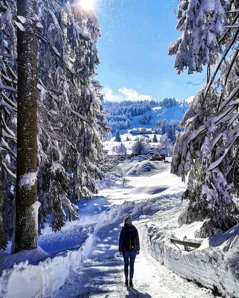 Sunny day in Vorarlberg ❄️☀️🤍 #ländle #bödele #daypackscrew Bödele