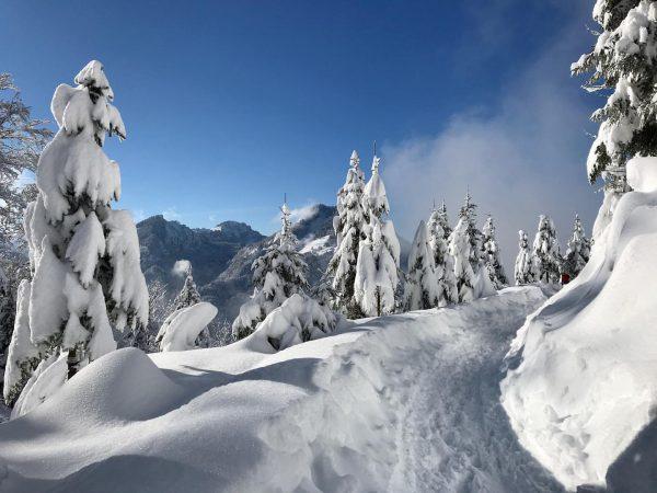 surreal #nofilteratall #winter #beauty #dornbirn #vorarlberg #snow #mountains #incredible Kehlegg, Vorarlberg, Austria