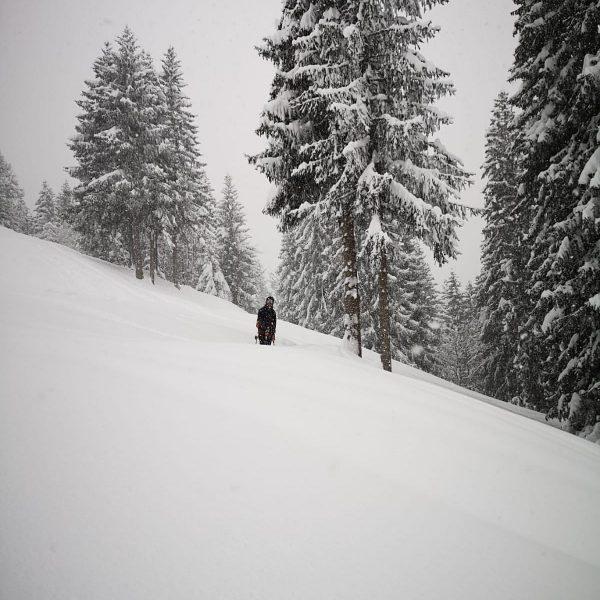 I'm really impressed 😅, soooo much snow #ski #powder #freeride #timetoplay #snow #stoked ...