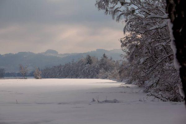 Schönen Samstag Abend 😀 #afternoon #walk #outside #gooutside #sunnyday #sun #sunny #clouds #cloudy #fog #snow #winter #winterwonderland...