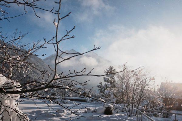 #closedbutclosetoyou I Diese wundervolle Stimmung, wenn die Sonne durch den winterlichen Nebel bricht, ...