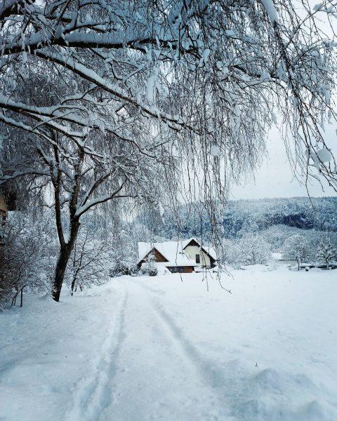 #visitvorarlberg #schnee #earth #vorarlbergwandern #schneespaziergang #snowdays #snow #total_meteo_ #snowland #snowlandscape #winterwonderland #wintertime #h2o_natura ...