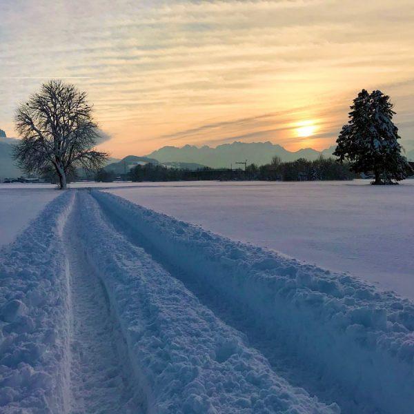 #tiefschnee #tiefverschneit #klirrendekälte #spurimschnee #spurenimschnee #wintersonne #winternachmittag #schneeweiß #schneeweg #vorarlberg #brederis #rankweil Brederis, ...