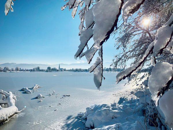 #winter2021 #january #hardambodensee #binnenbecken #hard #hardamsee #zugefrorenersee #grünerdamm #lakeofconstance #vorarlberg #aussicht #traumhaft #winterwonderland #sunnyday #snow #snowwhite #schneezauber...