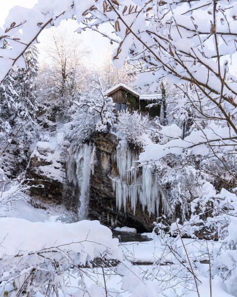 ❄️Winter Wonder Hometown❄️ . . . #SonyAlpha7Riii . . #winter #snow #tree #wonderland ...