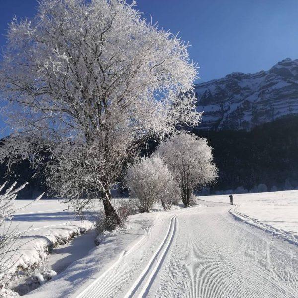 In Bizau gibt es viele Möglichkeiten für wunderschöne Winterwanderungen, einer Langlaufloipe oder kleinen Hängen zum Rodeln für...