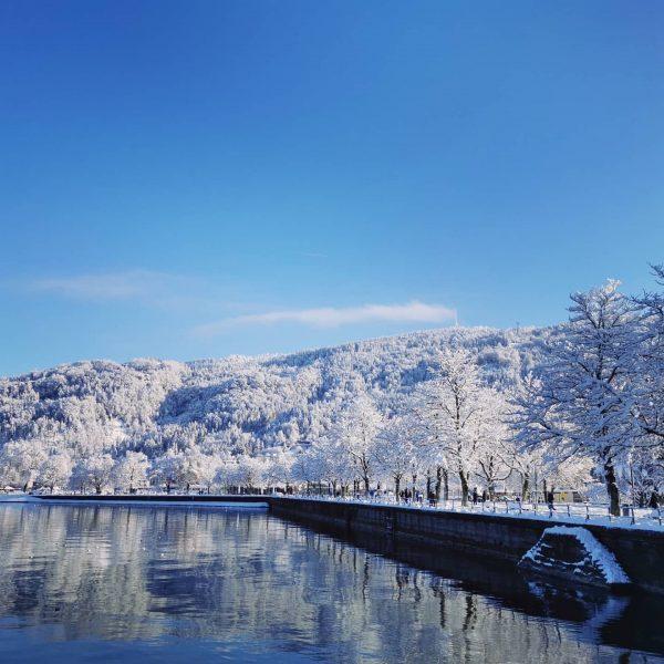🔹Lieblingsberg 🔹 Bin ma sicher die meisten seannan nur da Bodensee und verschneite Böm, vlt no da...