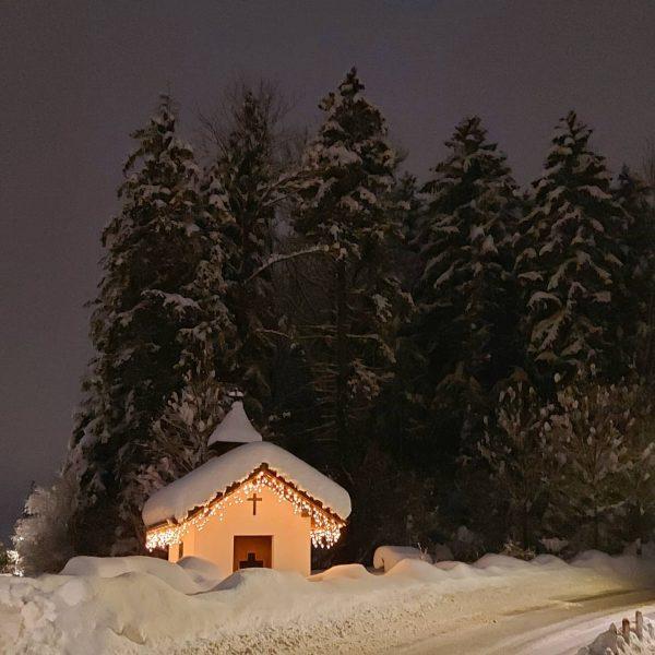 #visitvorarlberg #schnee #earth #vorarlbergwandern #schneespaziergang #snowdays #snow #total_meteo_ #snowland #snowlandscape #winterwonderland #wintertime #h2o_natura #best_moments_nature #natureyourebeautiful #natura #bestnatnatureshot...