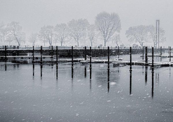 #snowisfalling #bregenz #bwphotography #schwarzweissfotografie #winter #winterwonderland #bodensee #rolandpaulitsch Bregenz