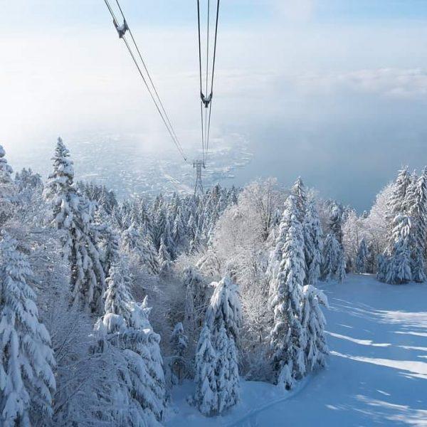 Winterwonderland 💞 #pfänderbahn #pfänder #bergamsee #bodensee #winter #winterliebe #zucker #letitsnow #landscapes Pfänderbahn