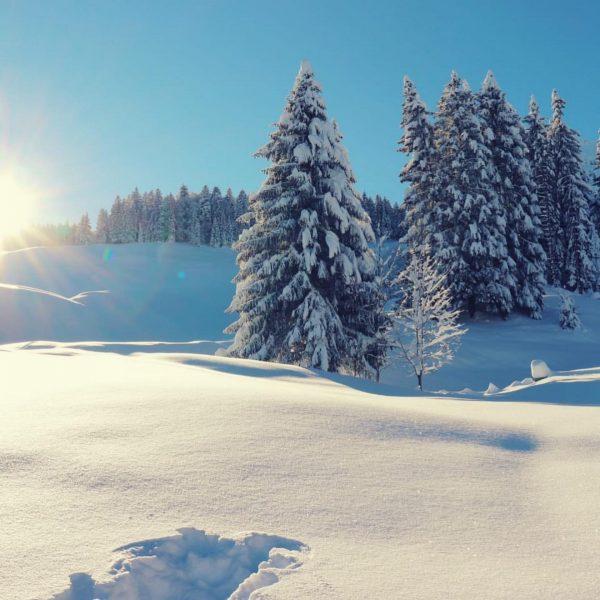 Noch ein kleiner Rückblick vom Wochenende...❄️ 📷 Magdalena Metzler #eggimbregenzerwald #visitbregenzerwald #winterwandern #schnee #winterwonderland Egg, Austria