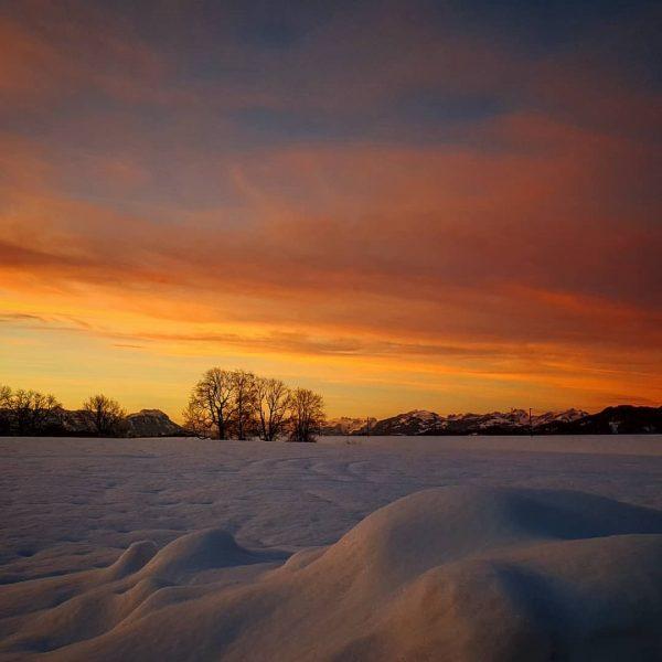 morning view..... #amarbeitsplatz #atwork #lustenau #vorarlberg #tolleaussicht #goodmorning #holdon #visitvorarlberg #traumkulisse #vorderhaustür #morningview #sunrise #whataview #austria #sonnenaufgang...