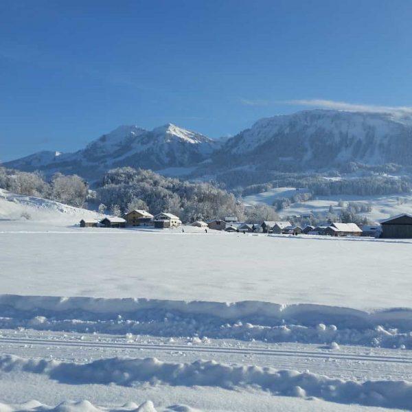 Noch ein kleiner Rückblick vom Wochenede vom Dorfer Feld. Winterwanderweg ist hier wohl passend ❄️ 📷 Gertrud...